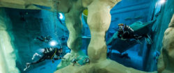 Diving & School - Indoor diving lessons in monte Mare / Foto: (c) Monte Mare
