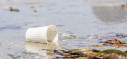 Plastic waste in the ocean- Foto: © TheOceanRace