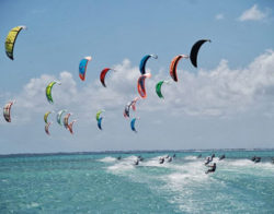 Surfing & Kite Trips